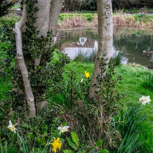 20170323_Croydon_Wattenden-Pond_The-View-from-Old-Lodge-Lane