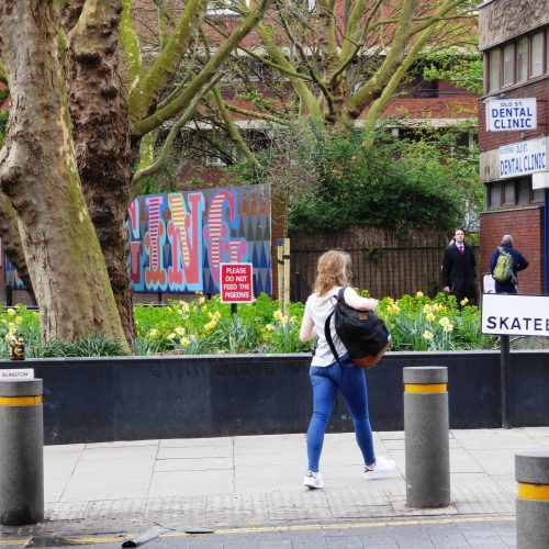20170323_Islington_Bath-Street_No-Skateboarding-on-the-daffodils