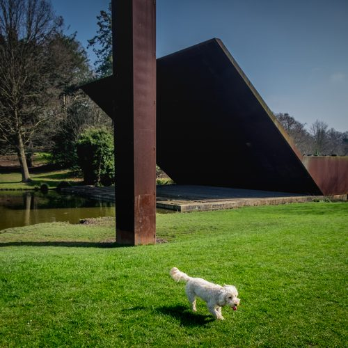 20170327_Bromley_Crystal-Palace-Park_Dog-at-Concert-Platform