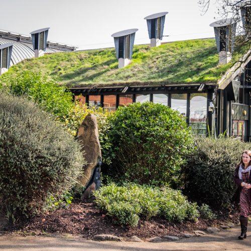 20170327_Lewisham_Horniman-Gardens_Living-Roof