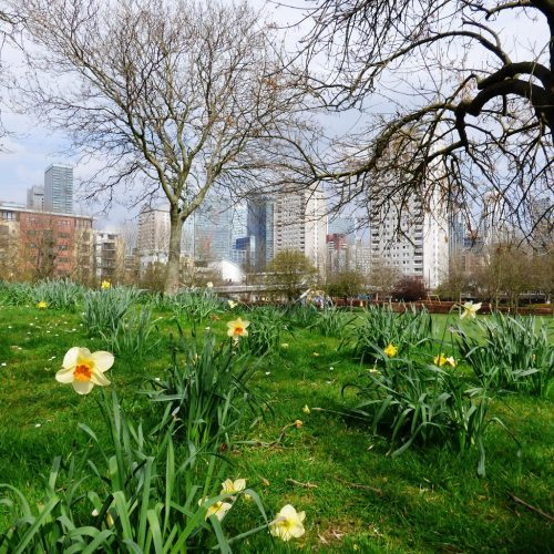 20170328_Tower-Hamlets_Sir-John-McDougall-Gardens_On-The-Isle-Of-Dogs