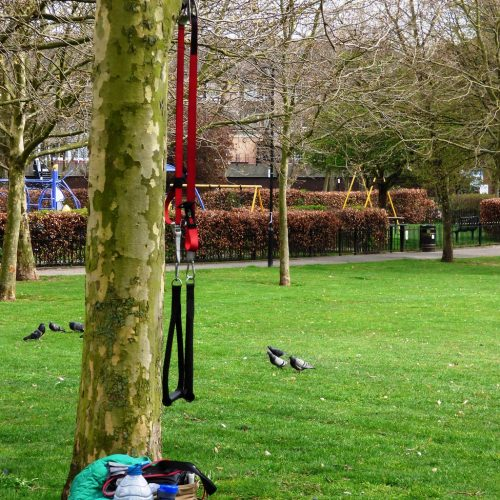 20170328_Tower-Hamlets_Sir-John-McDougall-Gardens_Simply-Hanging