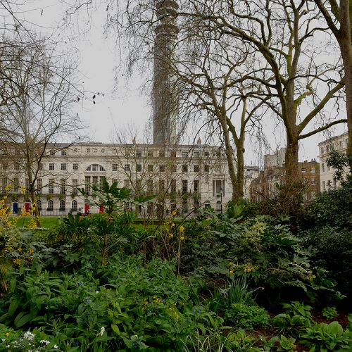 20170329_Camden_Fitzroy-Square_Gardens-with-BT-Tower-in-background