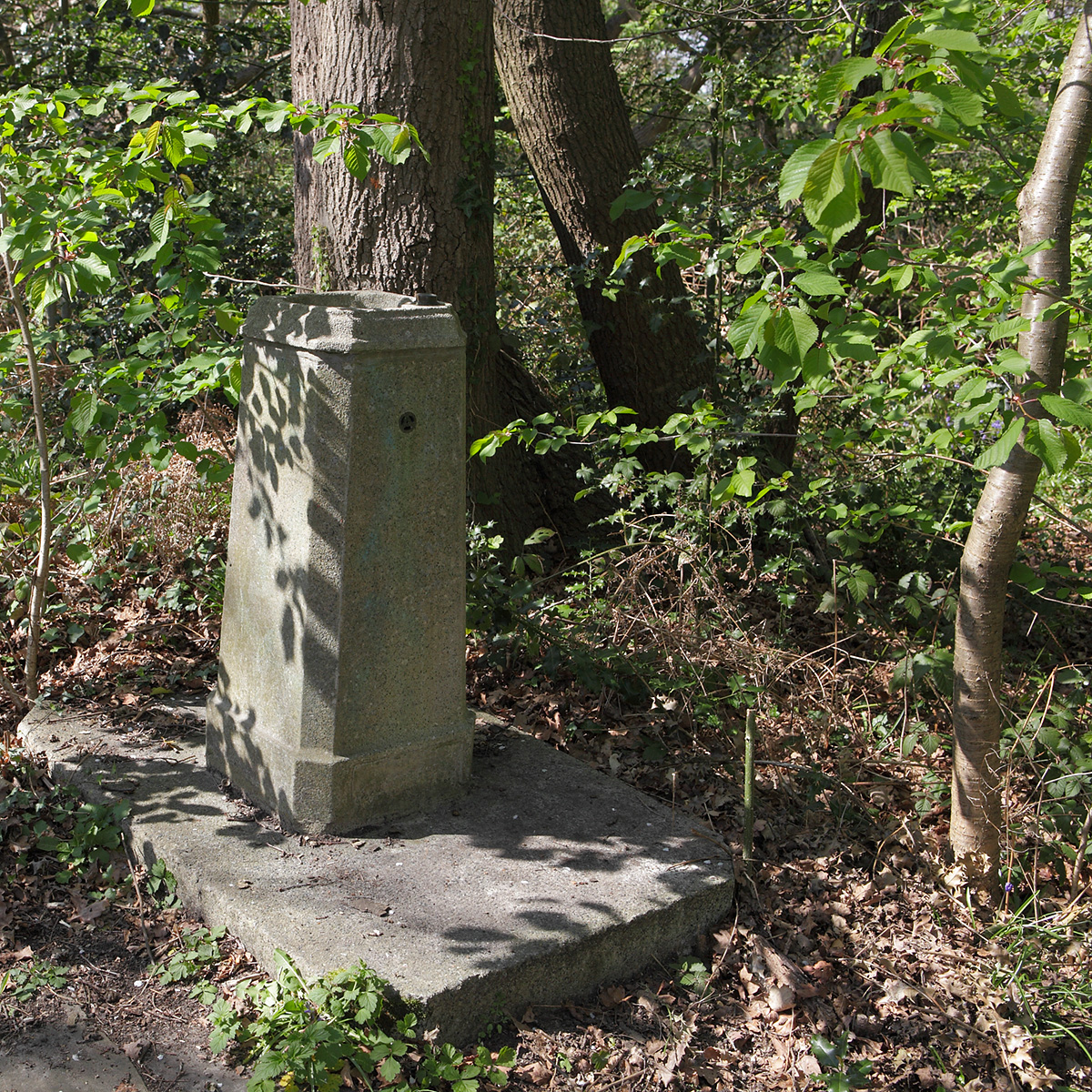 20170412_Croydon_Spring-Park-Wood_Drinking-fountain