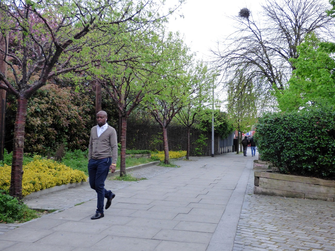 20170414_Hackney_Upper-Clapton-Road_A-breath-of-fresh-air-along-Upper-Clapton-Road