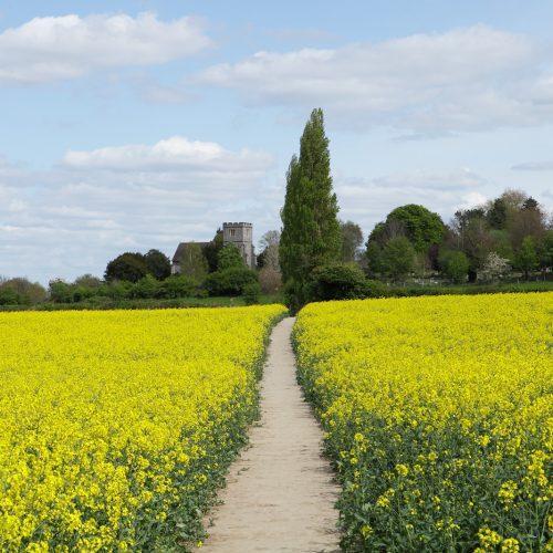 20170415_Bromley_Wickham-Court_Footpath