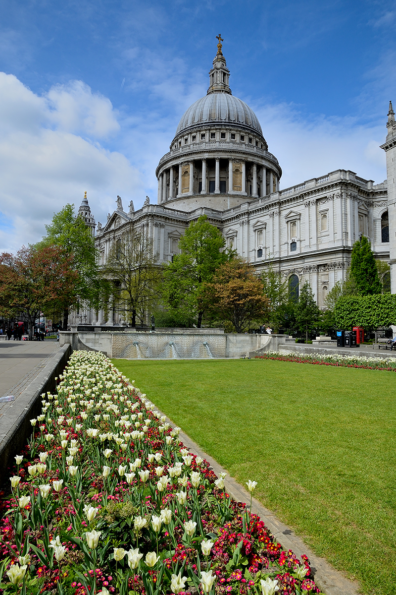 20170416_City-of-London_New-Change_Tulips-leading-to-St-Pauls