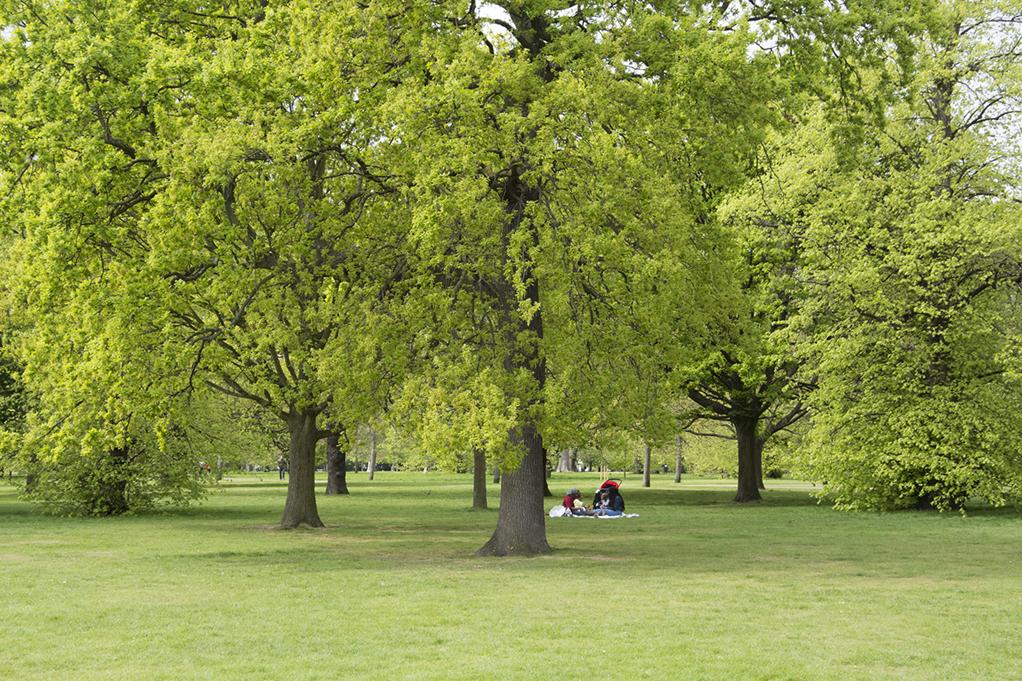 20170417_Kensington-and-Chelsea_-Kensington-Gardens_Glorious-spring-day
