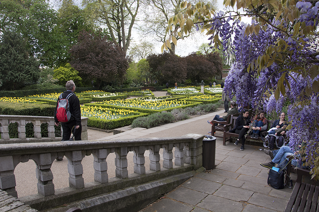 20170417_Kensington-and-Chelsea_Holland-Park_Kyoto-Gardens