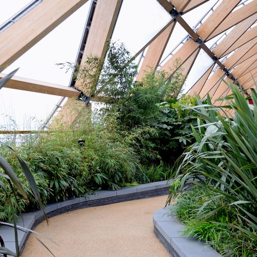 20170417_Tower-Hamlets_One-Canada-Square_Tropical-plants-in-roof-garden