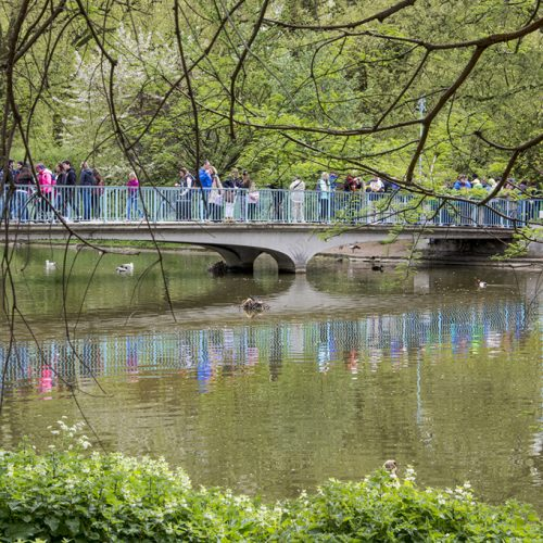 20170417_Westminster_-St-Jamess-Park-_Bridge-over-St-Jamess-Parks-lake