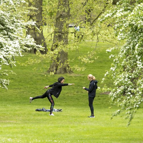 20170417_Westminster_Green-Park_People_-Spring_People_Stretching-under-Trainers-supervision