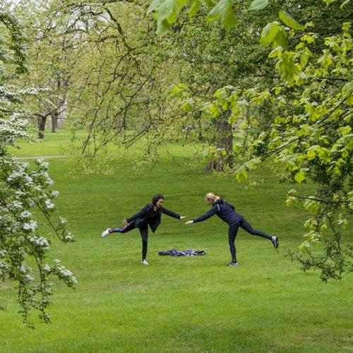 20170417_Westminstr_-Green-Park-_Balancing