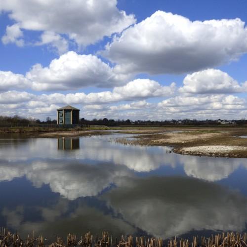 20160331_richmond_wetlands_reflected-clouds