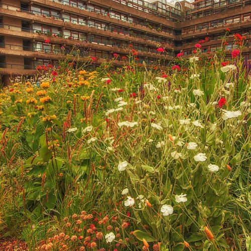4066-N23-Beech-Gardens-Barbican-Estate-EC2Y-8DH