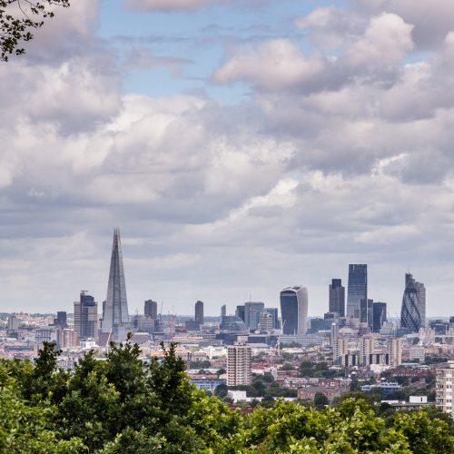 20160702_Southwark_One-Tree-Hill_London-Skyline