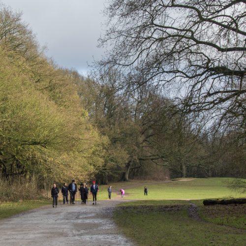 hampstead-heath-3