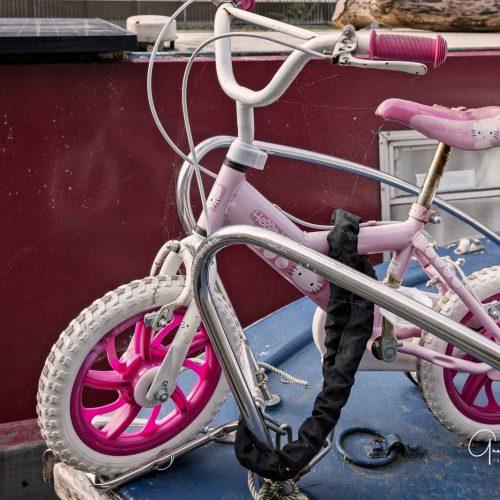 20161018_Camden_Regents-Canal_Pink-Trike