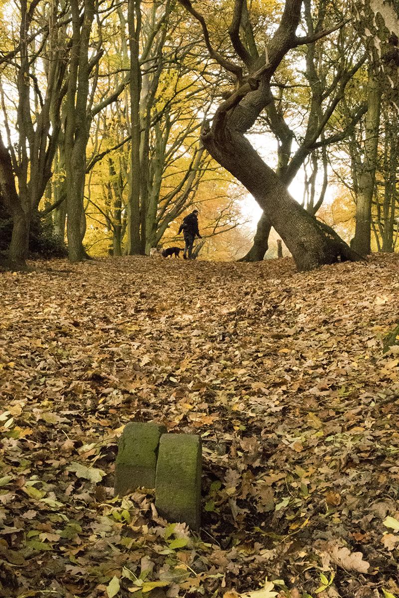 20161116_Camden_Hampstead-Heath_Landscape_Winter_Boundary-marker-stones