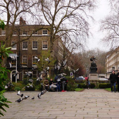 20170323_Camden_Bloomsbury-Square-Gardens_Bloomsbury-Square-Gardens