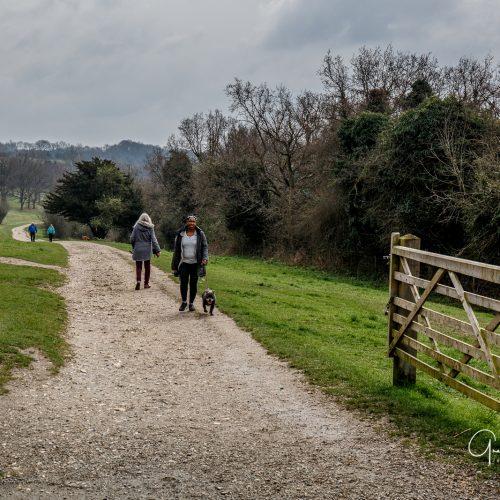 20170323_Croydon_Riddlesdown_Through-the-gate-we-go