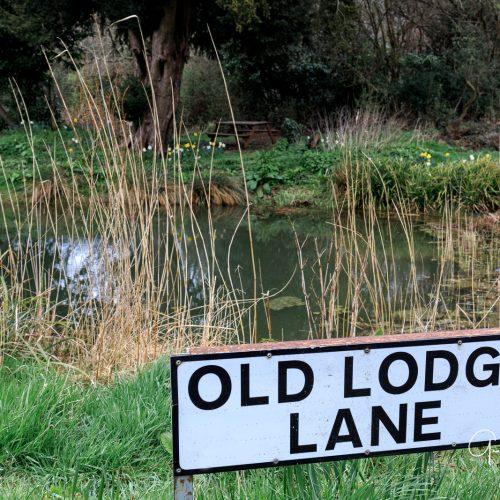 20170323_Croydon_Wattenden-Pond_Old-Lodge-Lane-Corner