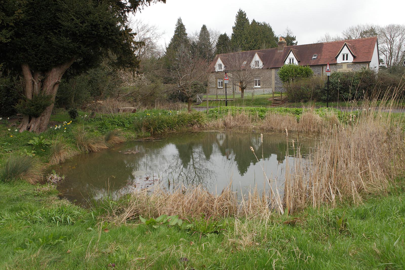 20170323_Croydon_Wattenden-Pond_View