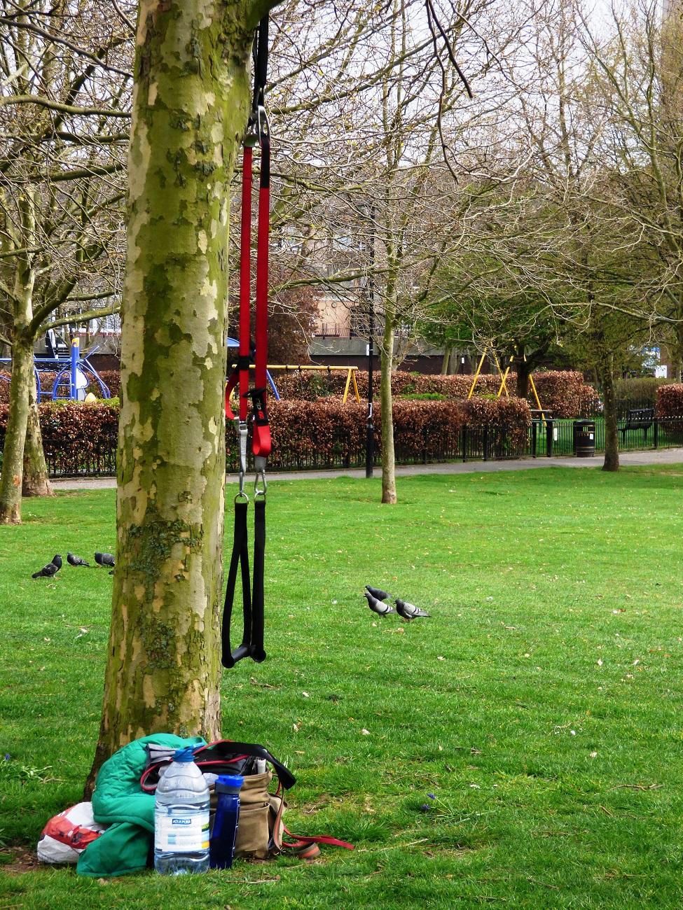 20170328_Tower-Hamlets_Sir-John-McDougall-Gardens_Simply-Hanging