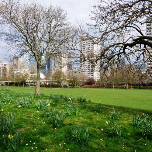 20170328_Tower-Hamlets_Sir-John-McDougall-Gardens_Sir-John-McDougall-Gardens