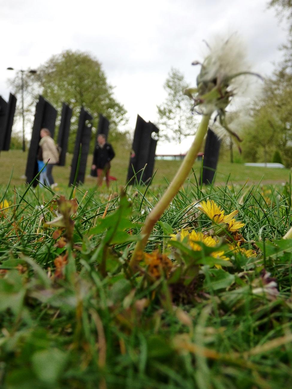 20170407_Westminster_New-Zealand-War-Memorial-Garden_Not-everything-in-life-is-clear