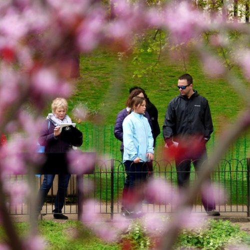 20170407_Westminster_St-Jamses-Park_Floral-frame