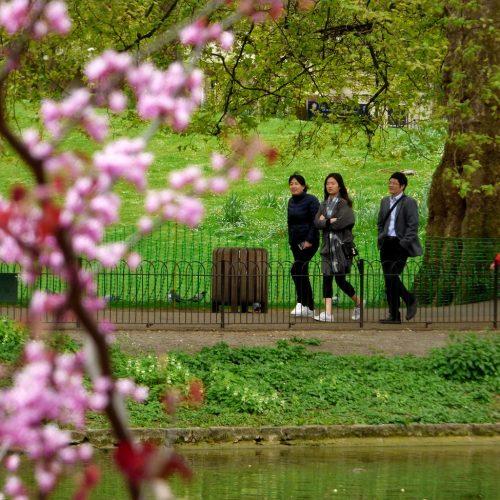 20170407_Westminster_St-Jamses-Park_St-Jamses-Park