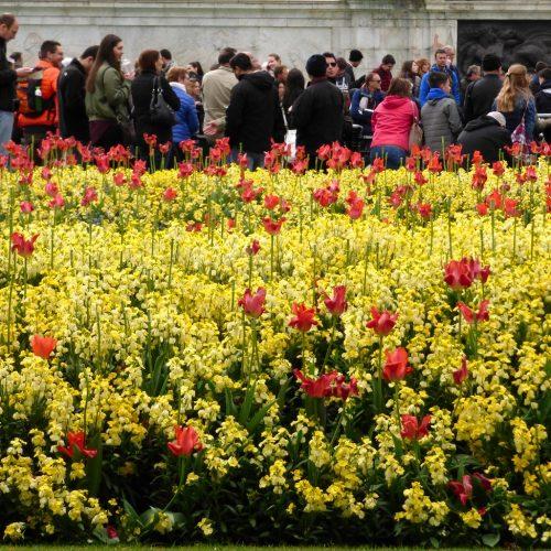 20170407_Westminster_Victoria-Memorial-Gardens_Tourists