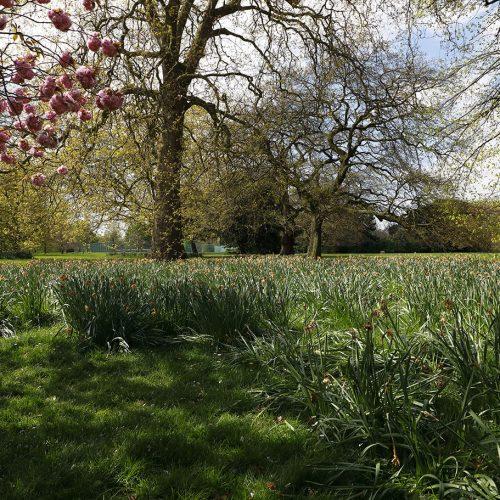 Greenwich-Park-22